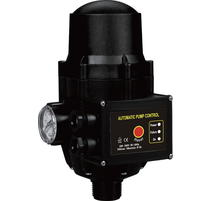 Elpumps DSK 10/prietokový spínač (Hydrokontrola)